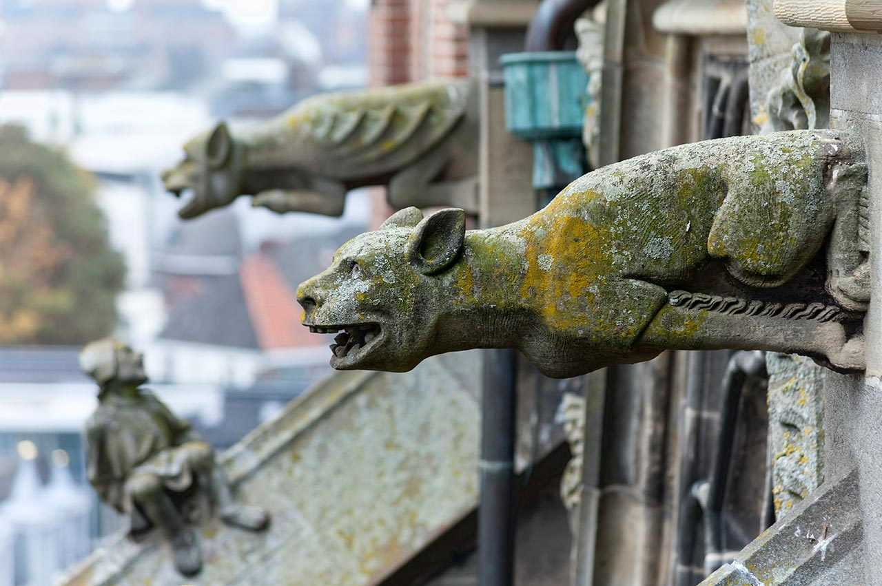 Gargoyle Figures on top of the St. John's Cathedral in 's ...